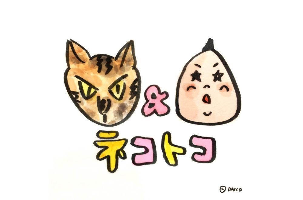 猫と子育て